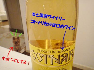 S_dsc02124