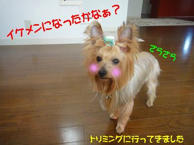 S_dsc04164