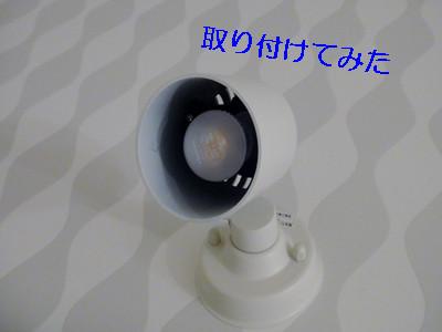 S_dsc04323