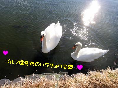S_dsc04277