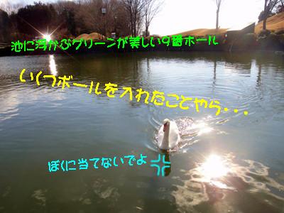 S_dsc04282