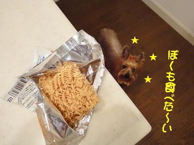 S_dsc00466