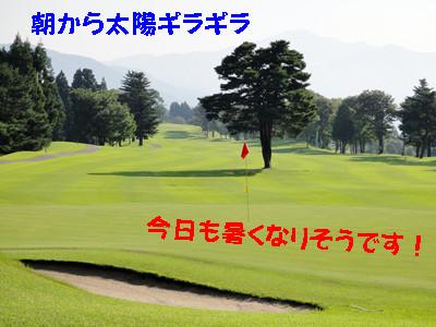 S_dsc01323