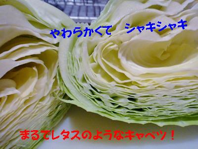 S_dsc02450_2