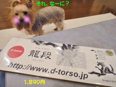 S_dsc00500