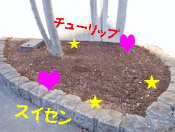 S_dsc00780