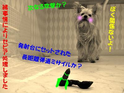 S_dsc04362