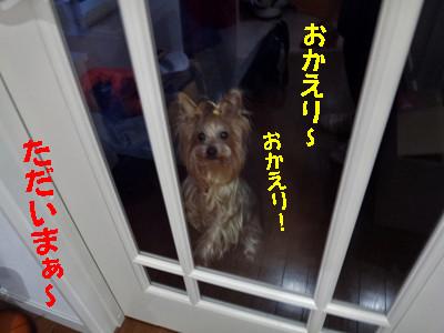 S_dsc06978